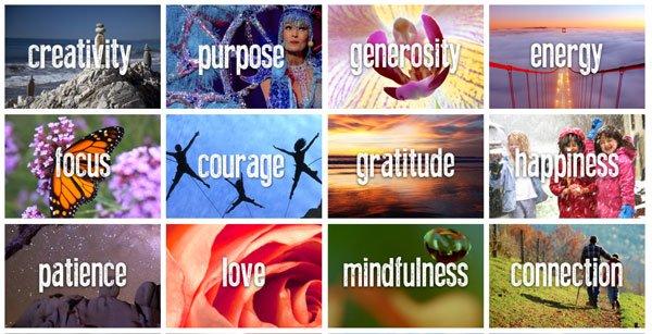 gratitude revealed